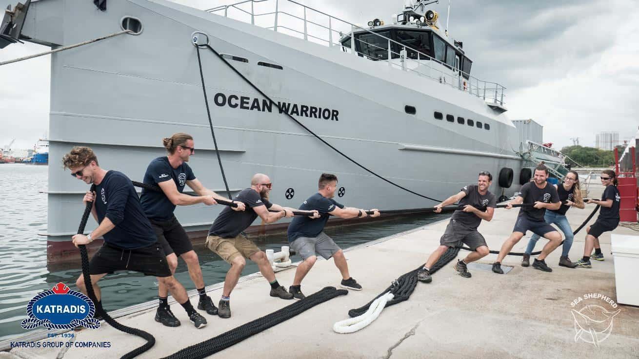 news ocean warrior